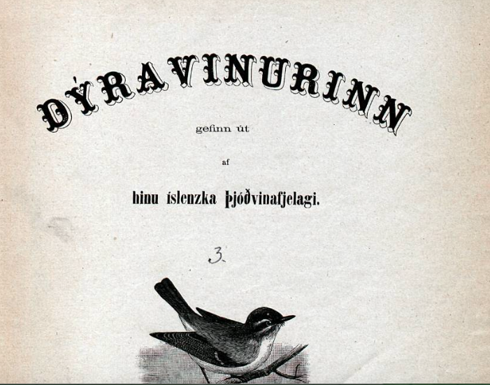 Auglýsing í dagblaði frá 1880 týndur rakki