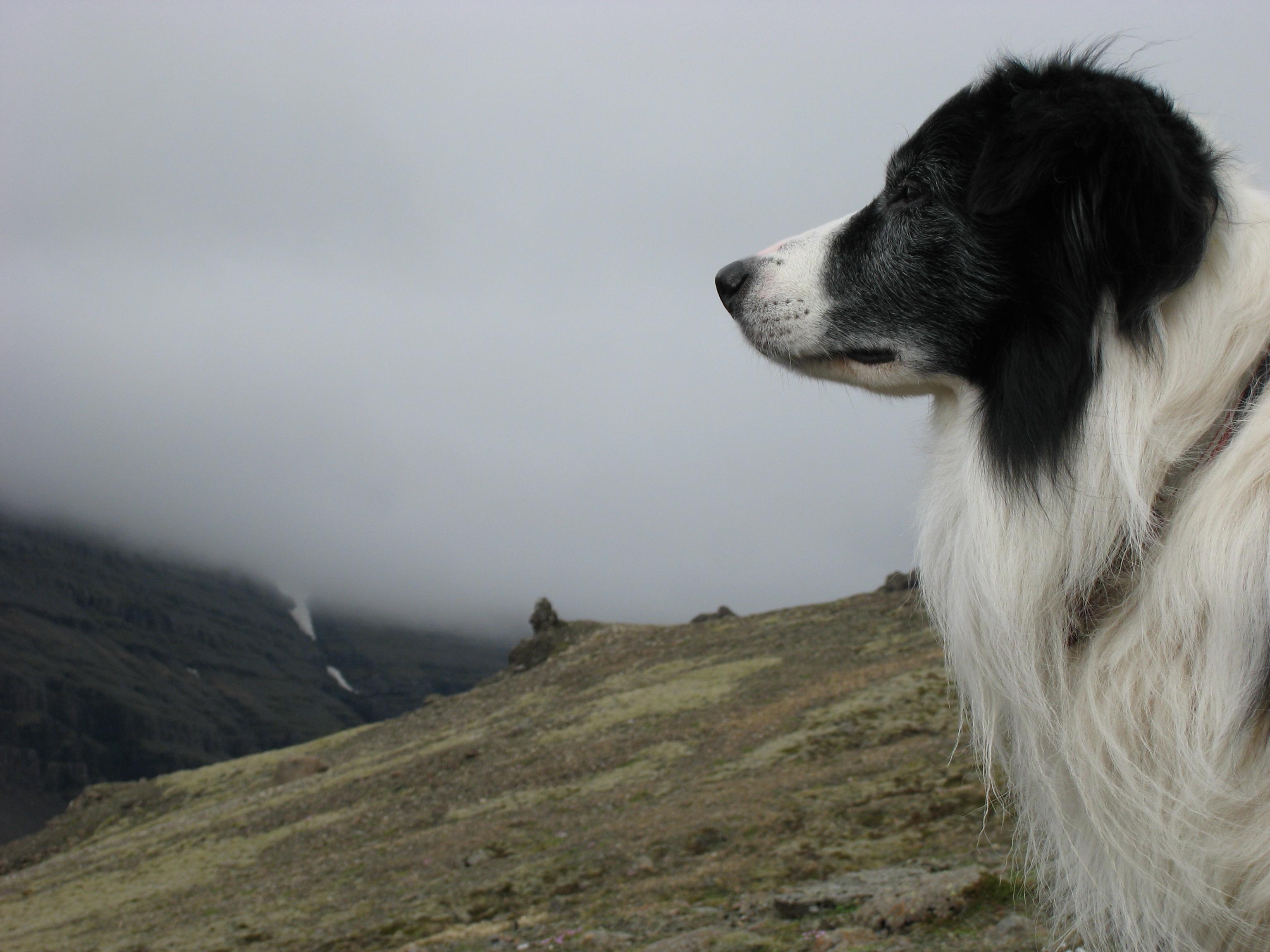 Námskeið á Akureyri 29.-31. maí
