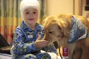 Post_2013.10.16_animal-therapy-can-provide-huge-135088_1_dog_5_head_injury