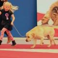 Ísabella og hundarnir