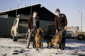 Snorri og leitarhundarnir