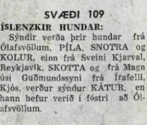 landbúnaðarsýningi 1968 2