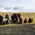 Hlýðnipróf Vinnuhundadeildar 21. apríl