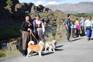 dagur islenska fjárhundsins 007