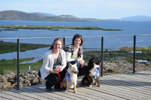 dagur islenska fjárhundsins 085