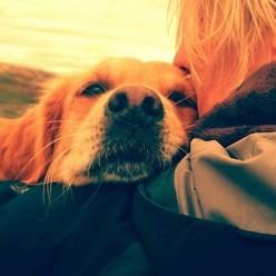 Bestu hundbækurnar að mati Line Sandstedt
