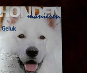 Um hundalíf á Íslandi í HONDEN manieren