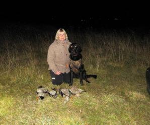 Hundurinn minn  – Fanney Harðardóttir